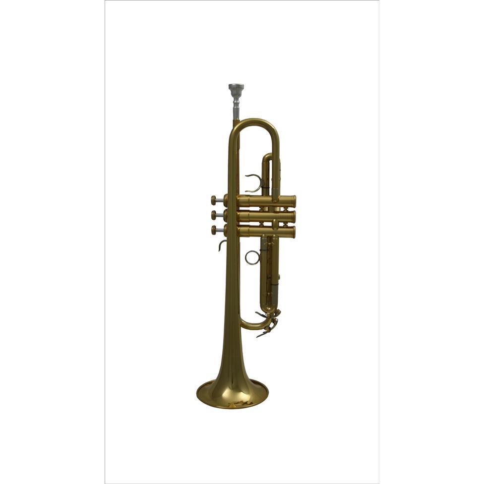 AMR Custom B flat trumpet (lacquer) Thumbnail Image 1