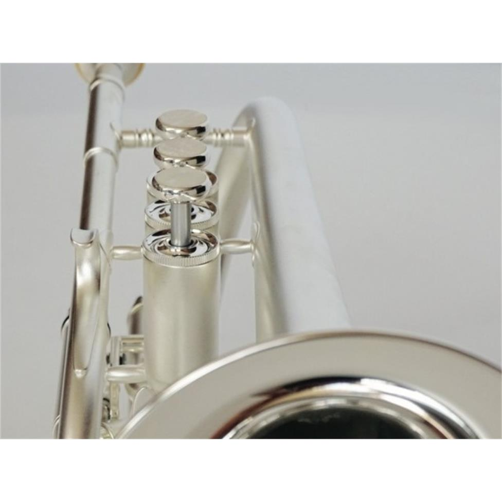 Besson Sovereign Anniversary BE928GT-2M B flat cornet (satin silver) Thumbnail Image 2