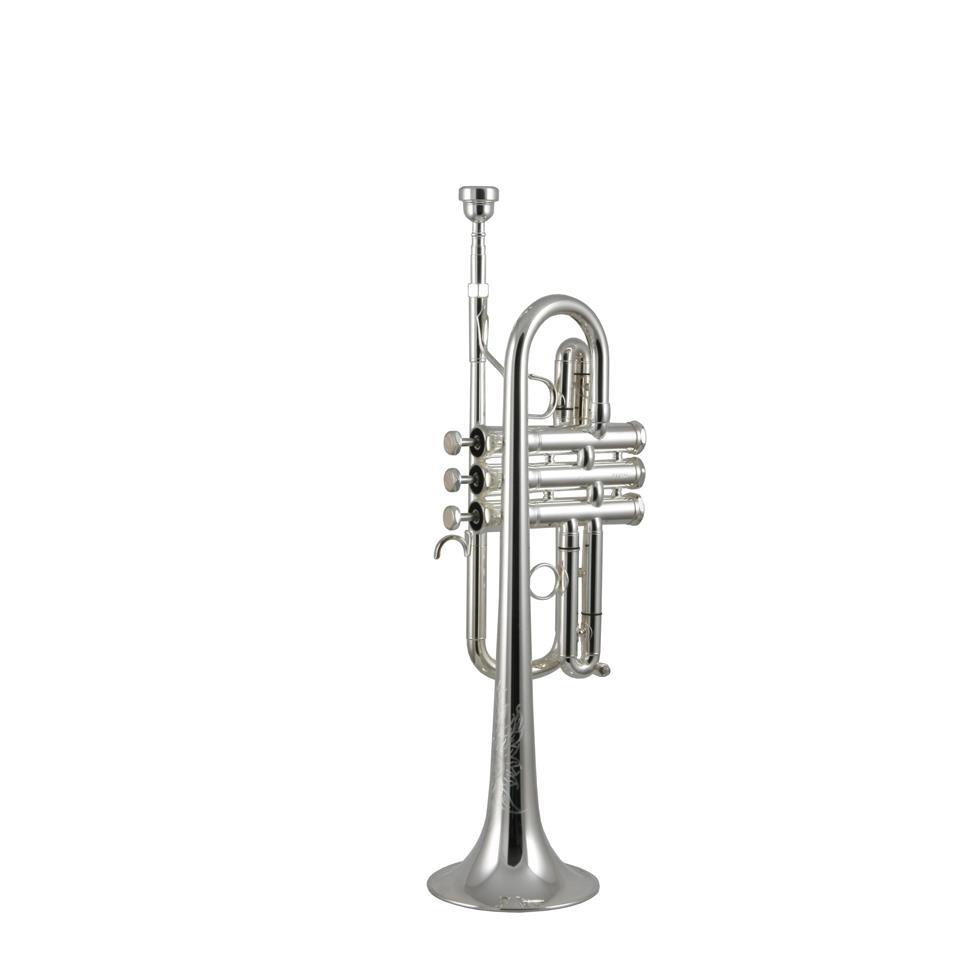 Eastman ETR540S E flat/D (silver)