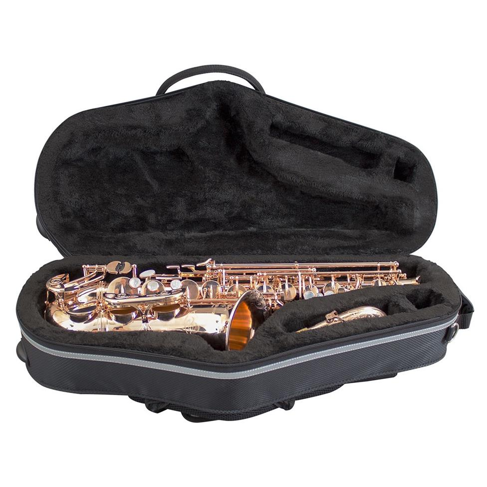 Champion alto sax case