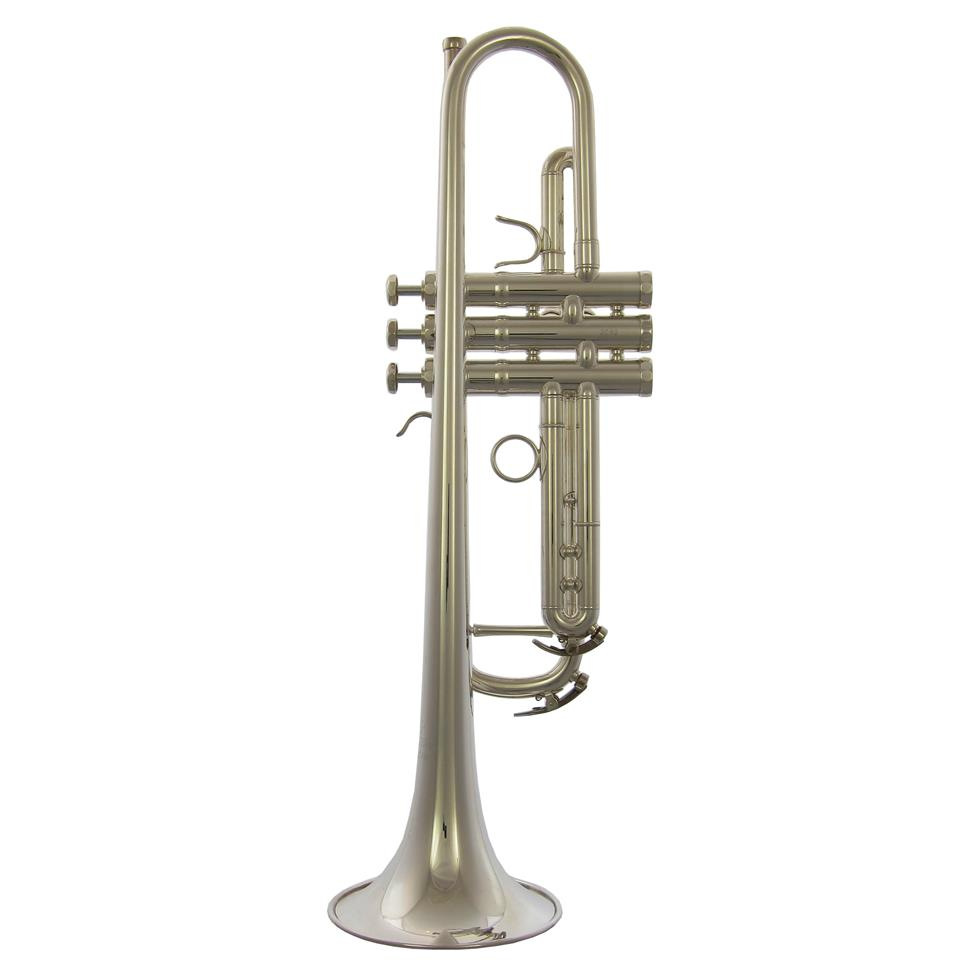 Schagerl Academica TR620S (silver)