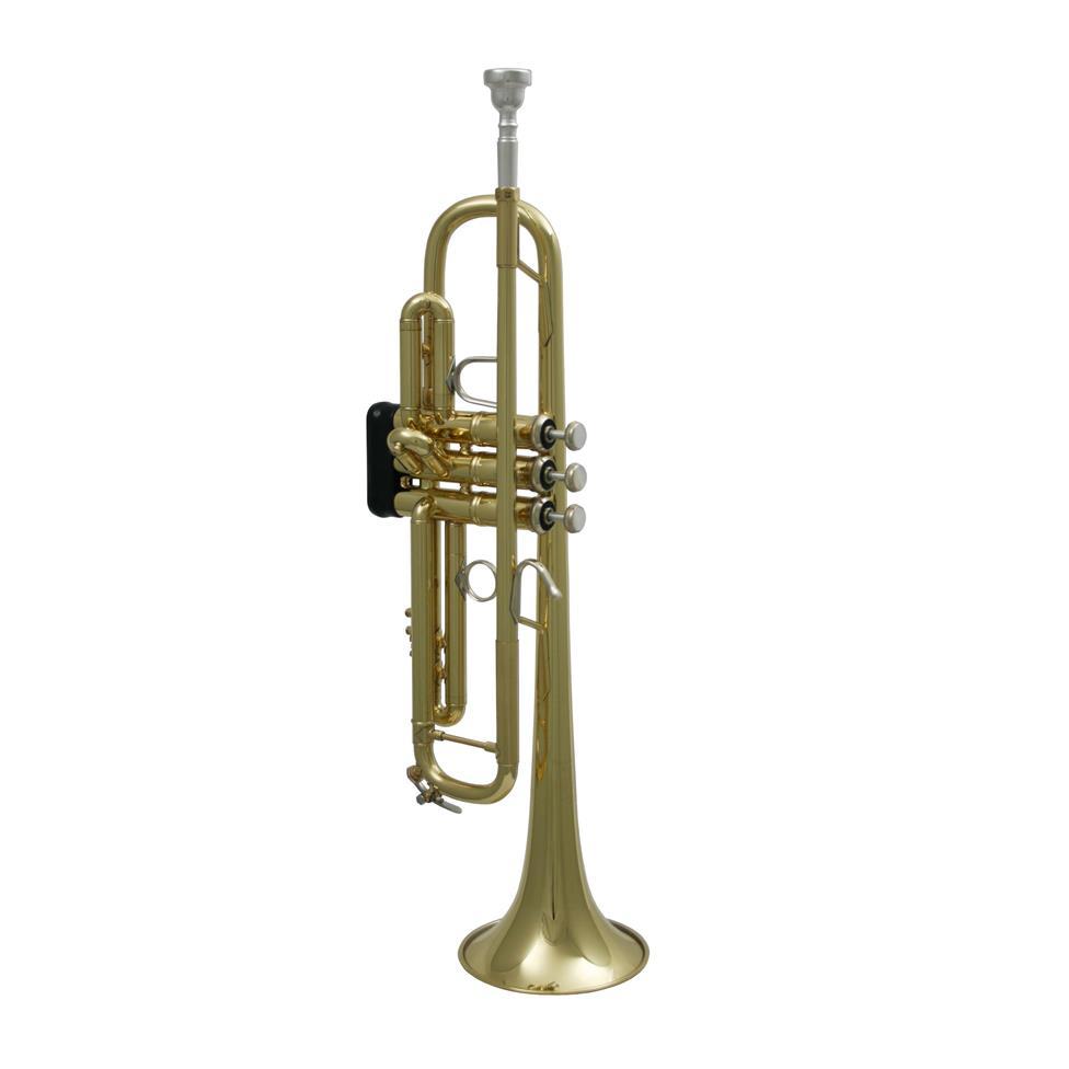 Bach Stradivarius LR18037